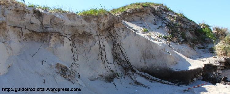 Erosion_duna_Guidoiro_texto
